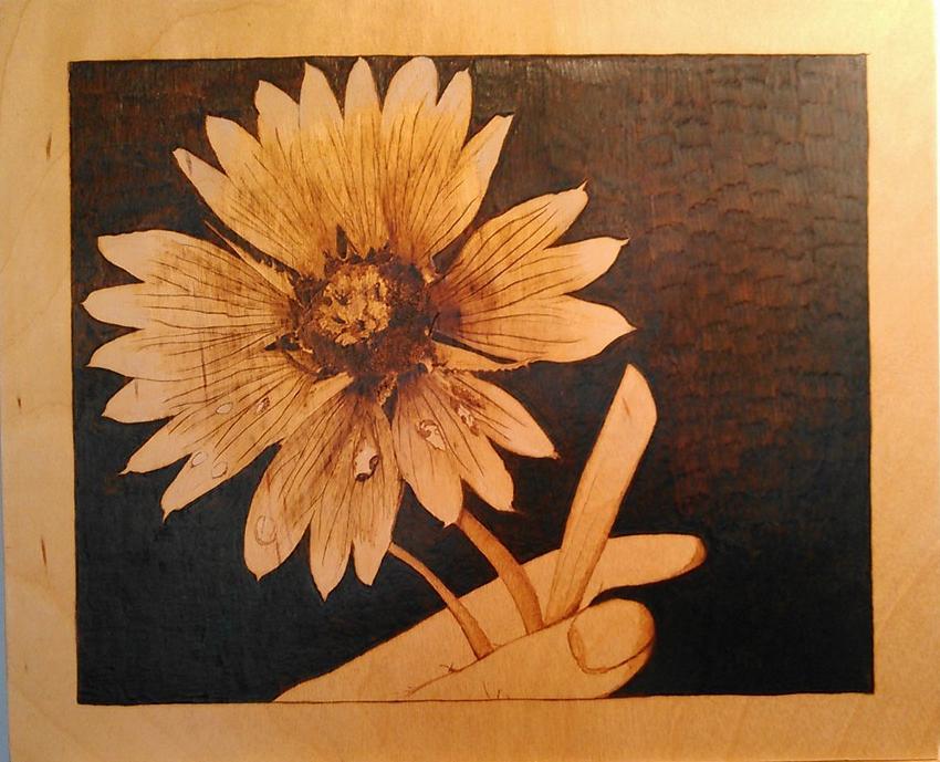 sombrero-flower-3