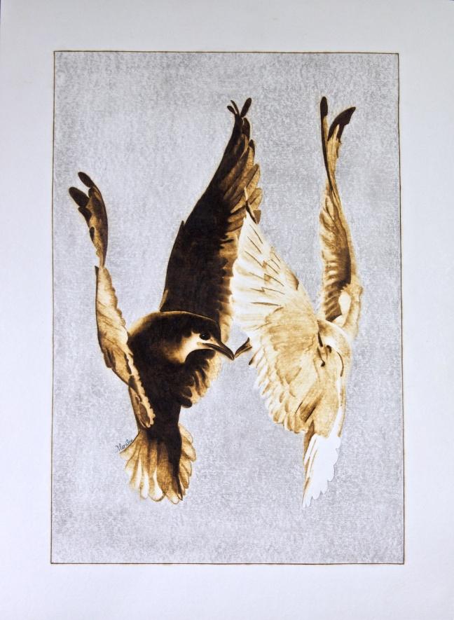 the-kiss-birds-2015-03-14