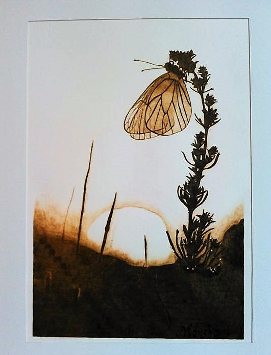 Butterfly Sunrise 02-2016 Pyrography on Paper 17 x 14 inches