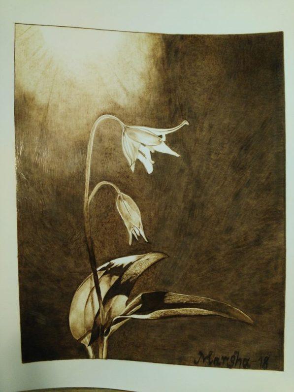Mountain Lily no frame