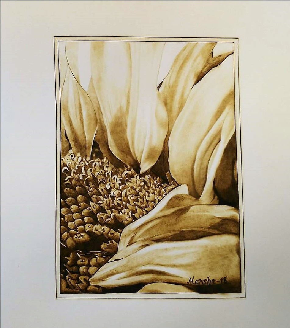 Petals 02-2018 Pyrography on Paper 8 x 10 inches