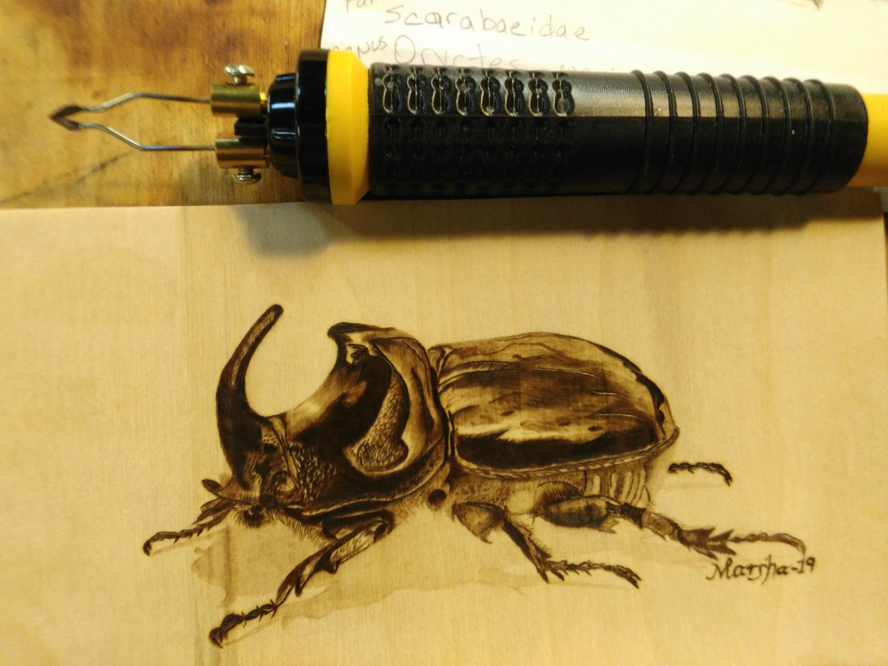 Beetle with pen